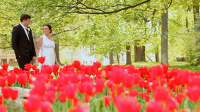 bride and groom walking near red tulips on iu campus